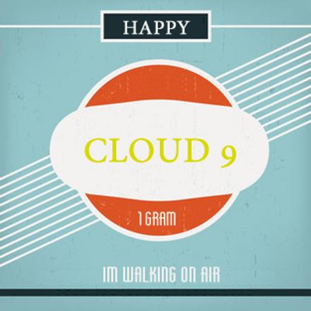 Cloud 9 Hemp Preroll