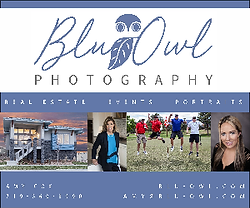 Blu Owl 300 x 250.png