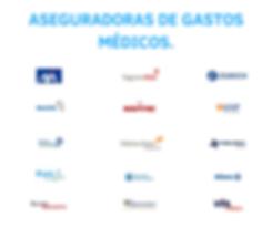 ASEGURADORAS DE GASTOS MEDICOS.png
