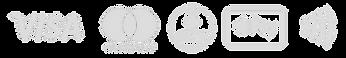 msuk-payment-logos.png
