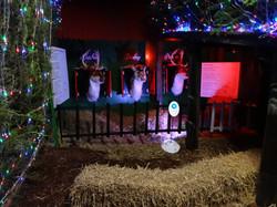 Singing reindeer - Copy (2)