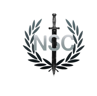 nsc try 4.png
