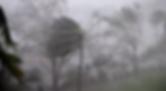 Screen Shot 2020-02-22 at 2.16.22 PM.png