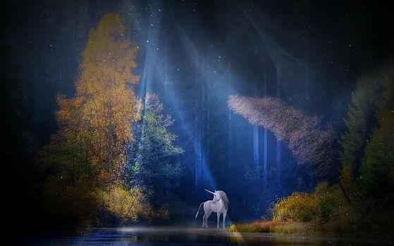 unicorn-1999549_1920.jpg