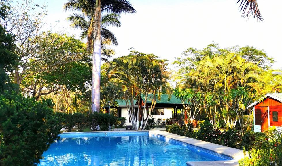 Palma Real piscina Abril 2020.jpg
