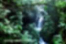 Tour bosque lluvioso/ Volcan Rincon de la Vieja, Cataratas azules, aguas termales,cañón termal y más