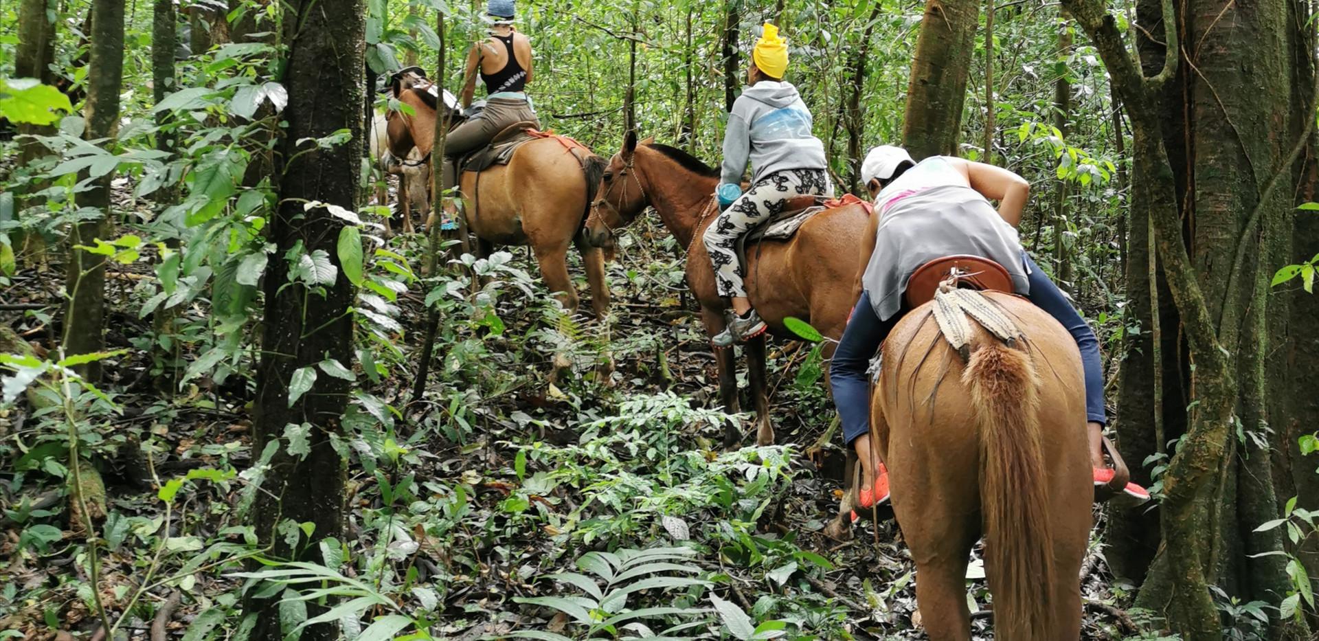 horseback ridng 5 con las francesas.jpg