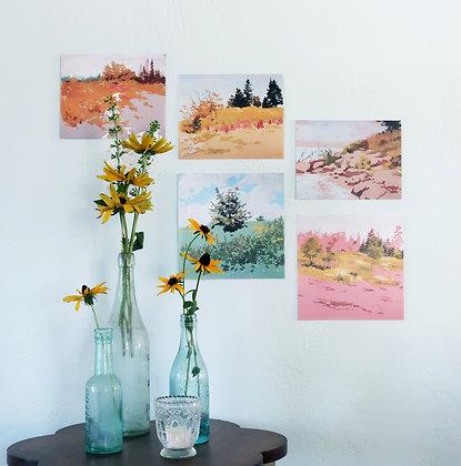 Landscape Small Print Portfolio