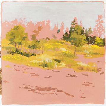 North Shore Meadow