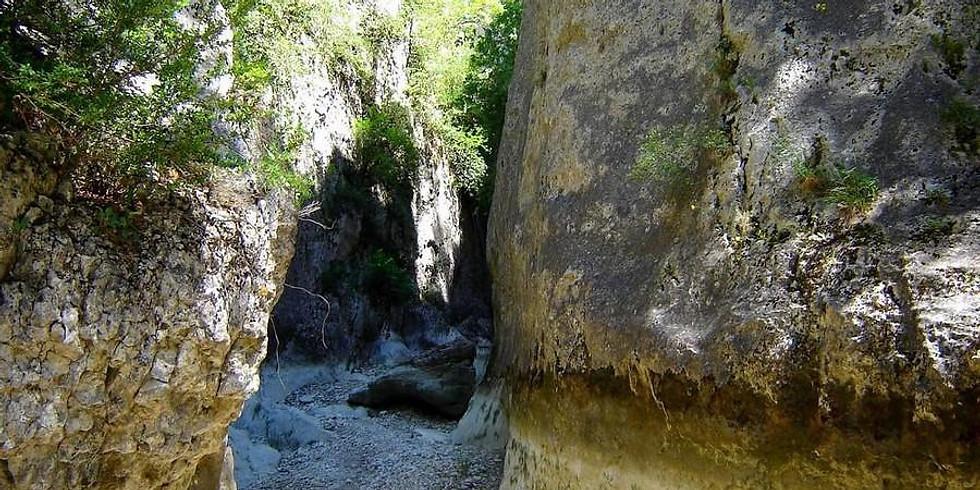 Canyon d'Opedette roseraie de l abbaye de Valsaintes