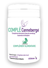 photo canneberge png.png