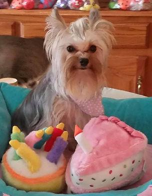 Harlee kaye birthday.jpg