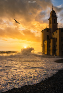 The Wave, the Church, the Sun and the Seagull