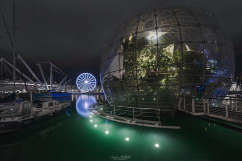 Bolla di Renzo Piano