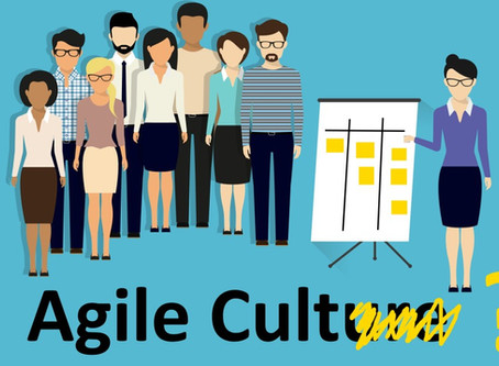 Agile - Cult or Culture?