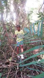 child exploring on nature path.jpg