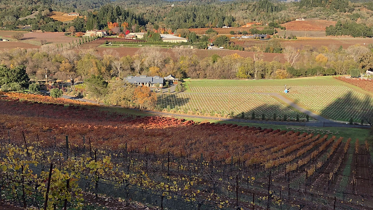 Russian River Valley Wine Tours