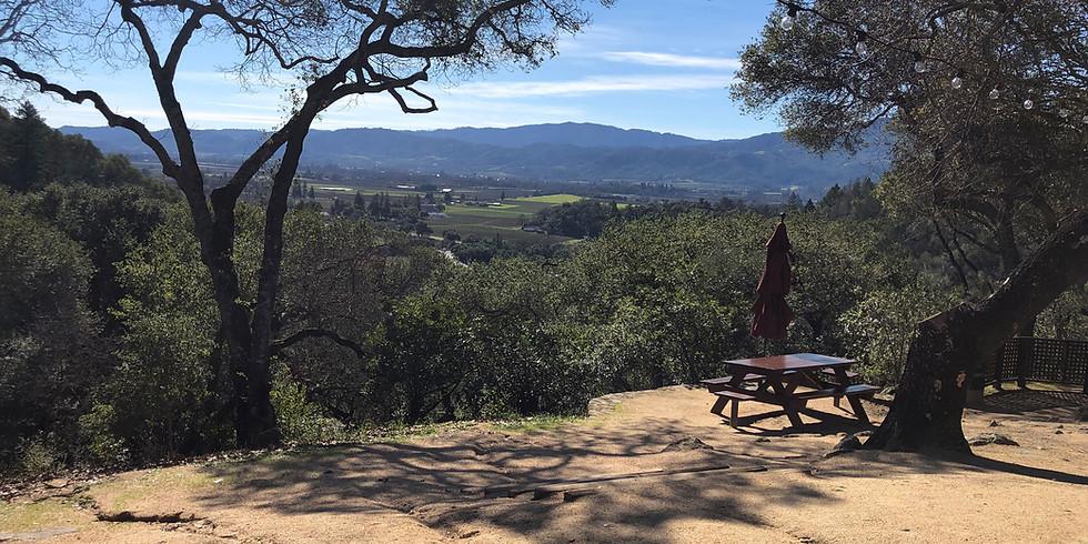 Wine Tour in Napa