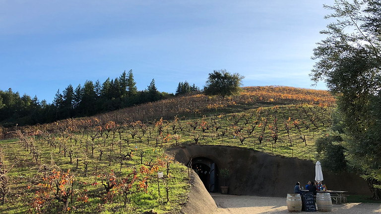 Wine Tours from San Francisco