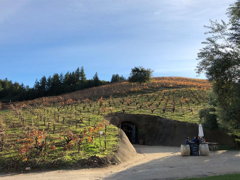 Vineyard-Cave-Entrance-View.jpg
