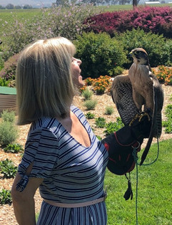 Client with Falcon.jpg