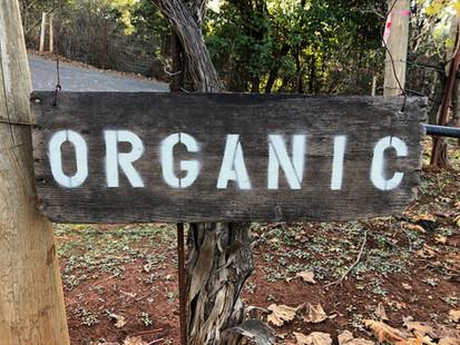 Organic-Sign.jpg