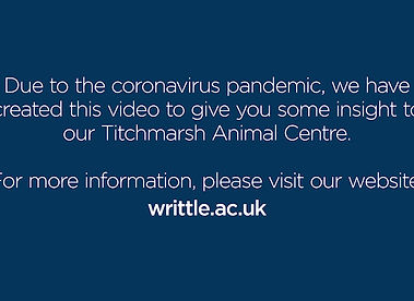 Find out more about our Titchmarsh Animal Centre at WUC