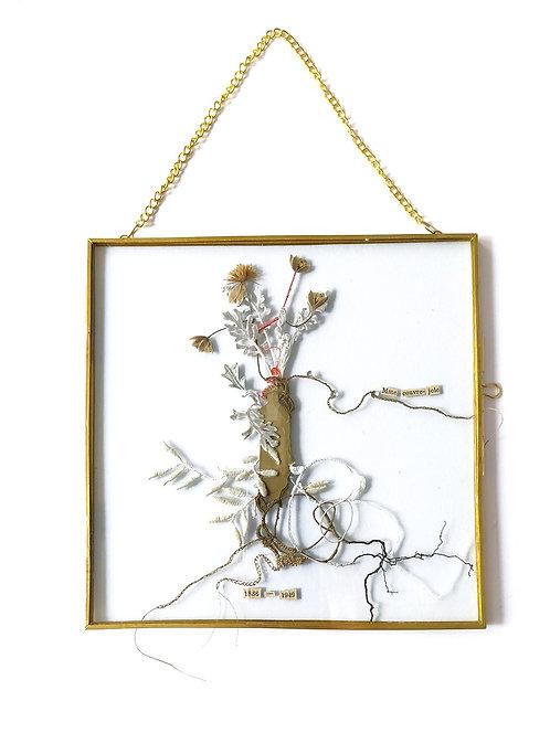 "Objets d'Art // Herbier Mémorial ""Mme couvre-joie"""
