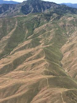 Wenatchee hills, Karen L Higgins