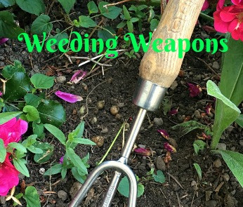 Waging War on Weeds, Part Two