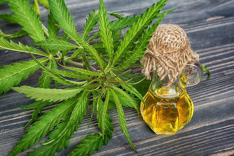 hemp oil for pain.jpeg
