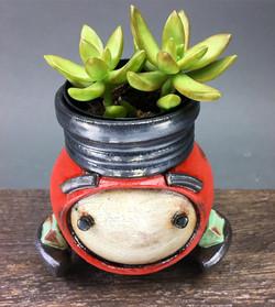 GrowBot Planter