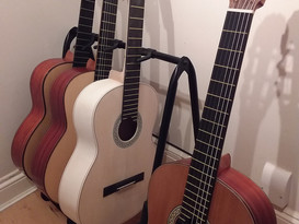 Concert Model 1 guitars