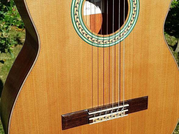 Vegan Concert Model 1 - no 003