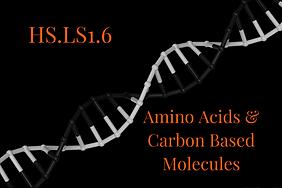 HS.LS1.6.png