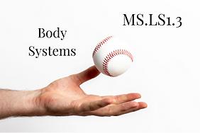MS.LS1.3.png