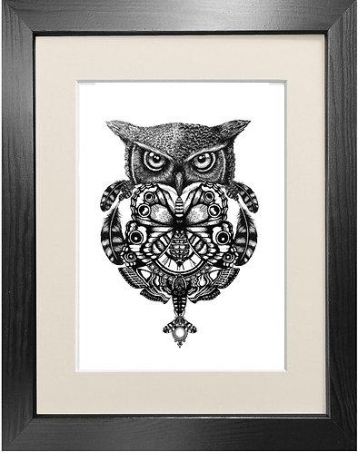 'The Owl & Pocket Watch' - Fine Art Print