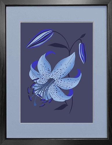 'Antique Lily, Blue' - Fine Art Print