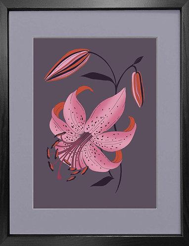 'Antique Lily, Mauve' - Fine Art Print