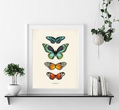 Tropical Butterflies.jpg