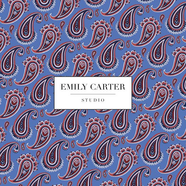 Emily-Carter_Paisley-Print B.jpg