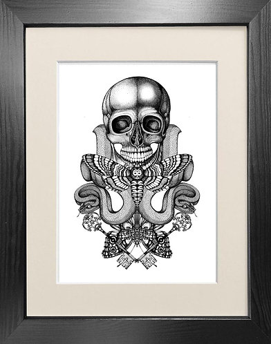 'Death's Head' - Fine Art Print