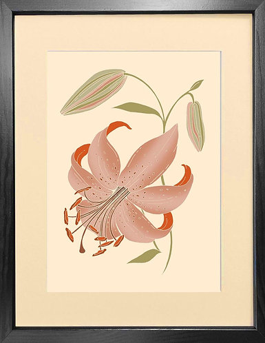 'Antique Lily' - Fine Art Print