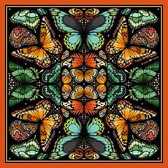 1. butterflies BLACK jpeg new symetry.jp