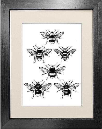 'British Bees' Fine Art Print