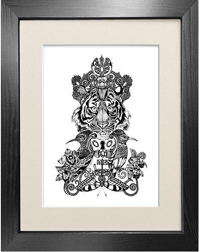 'The Royal Tiger' - Fine Art Print