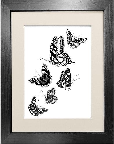 'British Butterflies' Fine Art Print