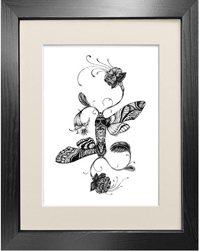 'Fuchsiadoptera' - Fine Art Print