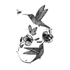 HUMMINGBIRD & HYDRANGEA.jpeg