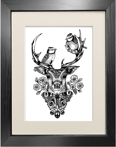 'The Roe Deer' - Fine Art Print